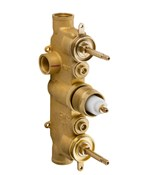 2000 Thermostatic Rough with 2 Integrated Volume Controls